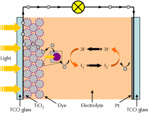 Setup of a Dye Solar Cell  Figure 1 shows a simplified diagram of a dye solar cell.