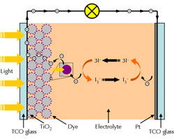 simplified diagram of a dye solar cell.
